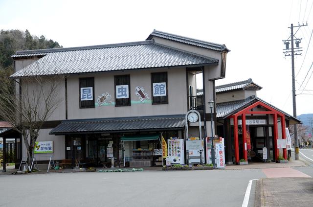 0401谷汲駅昆虫館.JPG
