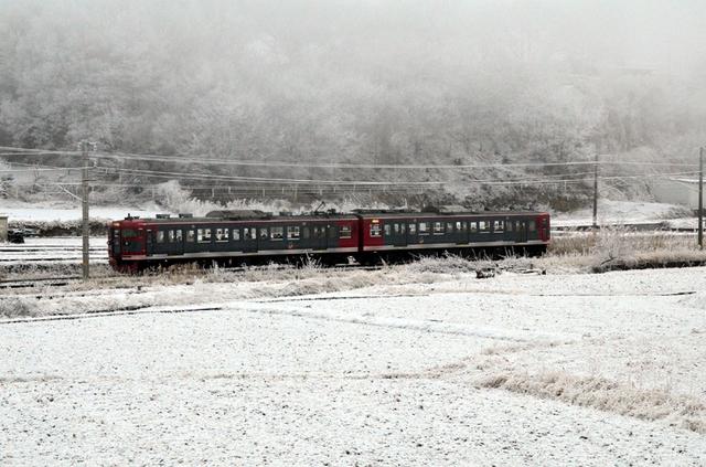 0113雪の平原115系2連.JPG