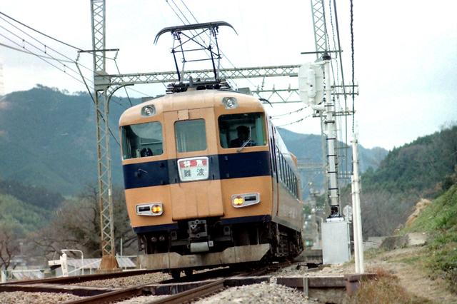 名阪特急近鉄長谷寺30000系下り.JPG